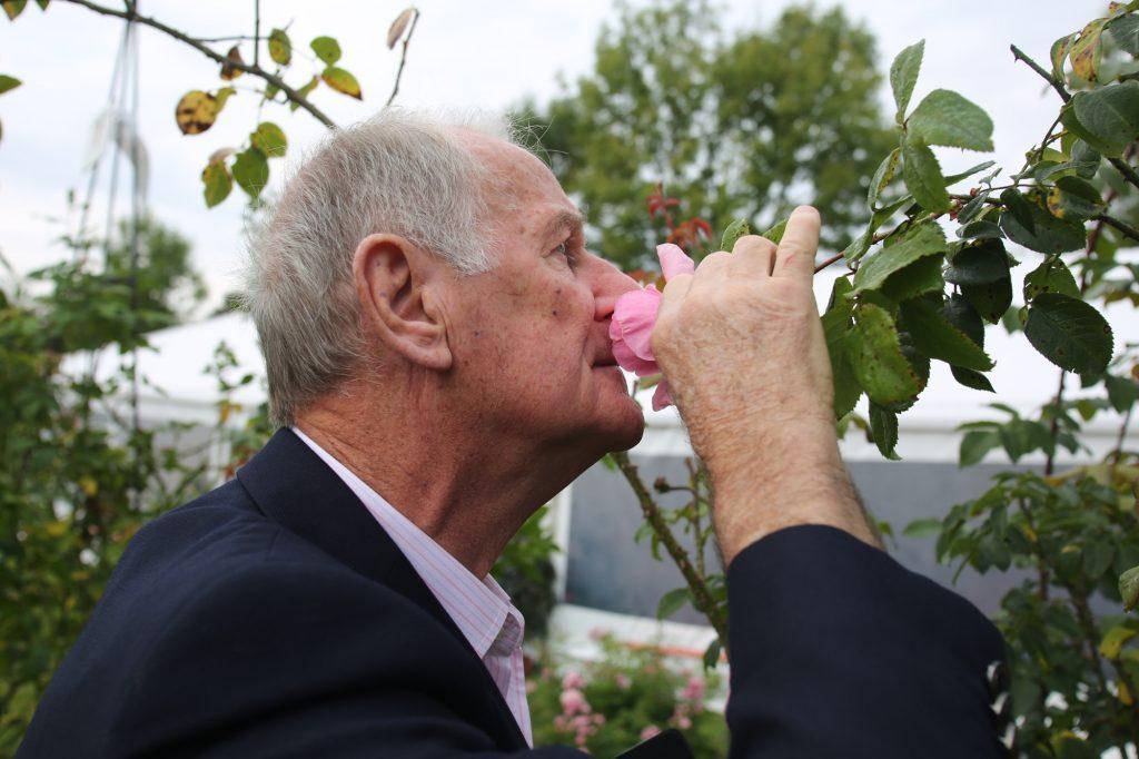 En route vers la découverte des parfums de la rose