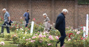 """Reportage ACTV - """"Le Roeulx : la rose à l'honneur"""""""