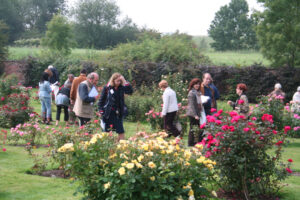 Photos du 47e Concours International de Roses Nouvelles du Roeulx