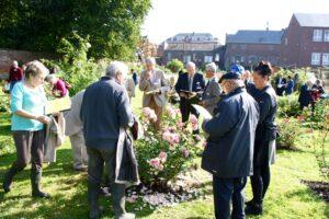 Photos du 52e Concours International de Roses Nouvelles du Roeulx